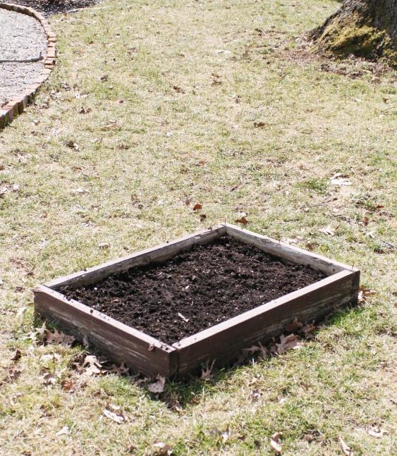 Blog Spring Planting Box